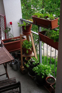 front page balcony-with-red-planters_2